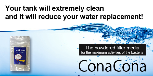 ConaCona/The powdered filter media for the maximum activities of the bacteria/Your tank will extremely clean and it will reduce your water replacement!