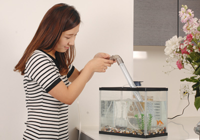 《水を捨てる》水槽の底にたまった糞などの汚れを中心に、1/5程度の水を捨ててゆきます。